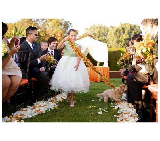 pets-in-wedding-2